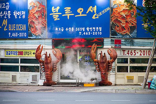 Steaming-Lobster-Busan