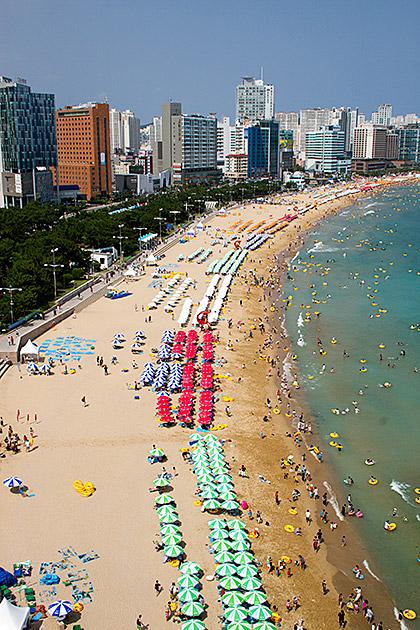 Summer Busan