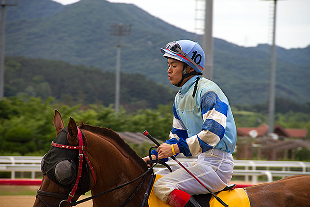 Korean Horse Jockey
