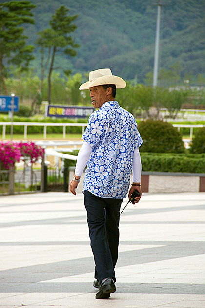 Real Korean Cowboy