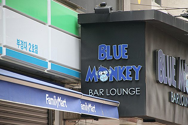 Blue Monkey Busan